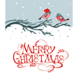 Christmas background with birds vector
