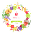 Fruits in the circle on white background vector