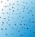 Birds gulls black silhouette on blue background vector