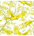 Seamless pattern with sprig of mimosa vector