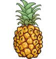 Pineapple fruit cartoon vector