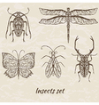 Set of abstract insects vector