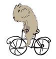Hamster on a bike vector