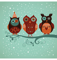 Three cute owls vector