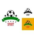 Football or soccer emblem vector