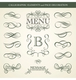 Calligraphic elements and page decoration vector
