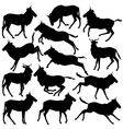 Wilderbeest silhouettes vector