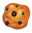 A crunchy biscuit with choco balls vector