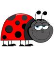 Ladybug cartoon character vector