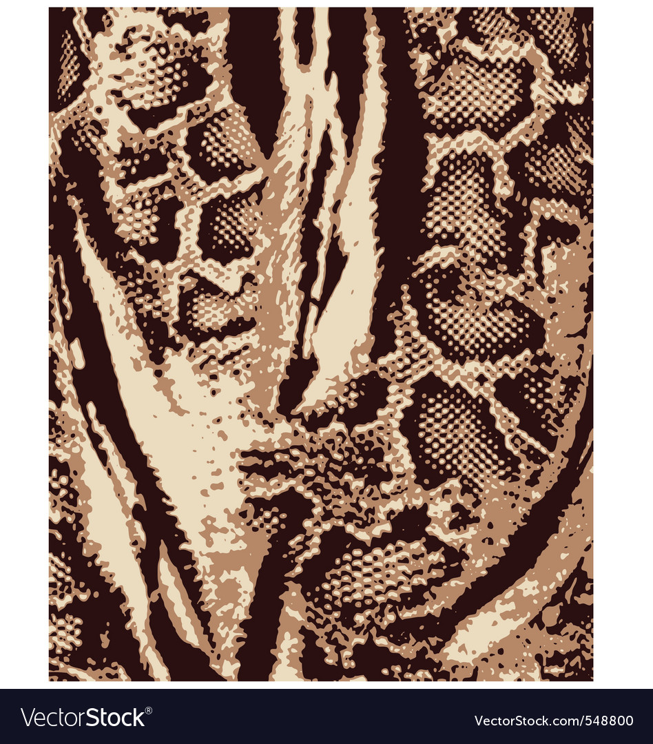 Animal skin pattern vector | Price: 1 Credit (USD $1)