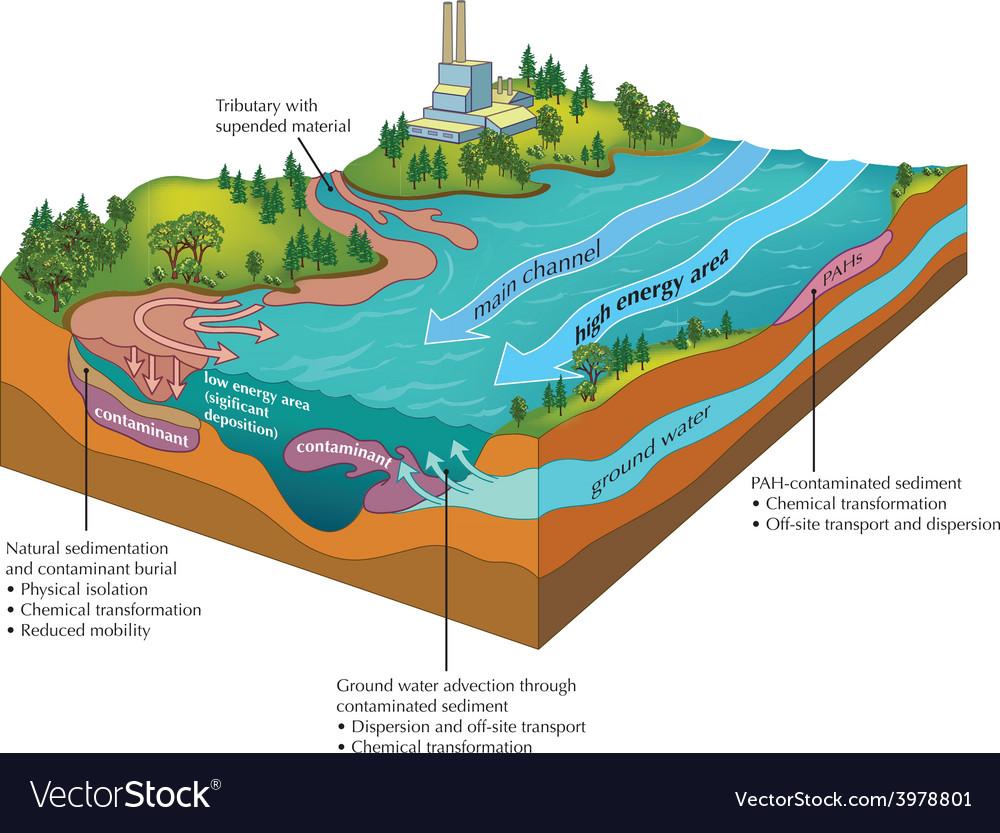 River contamination vector | Price: 1 Credit (USD $1)