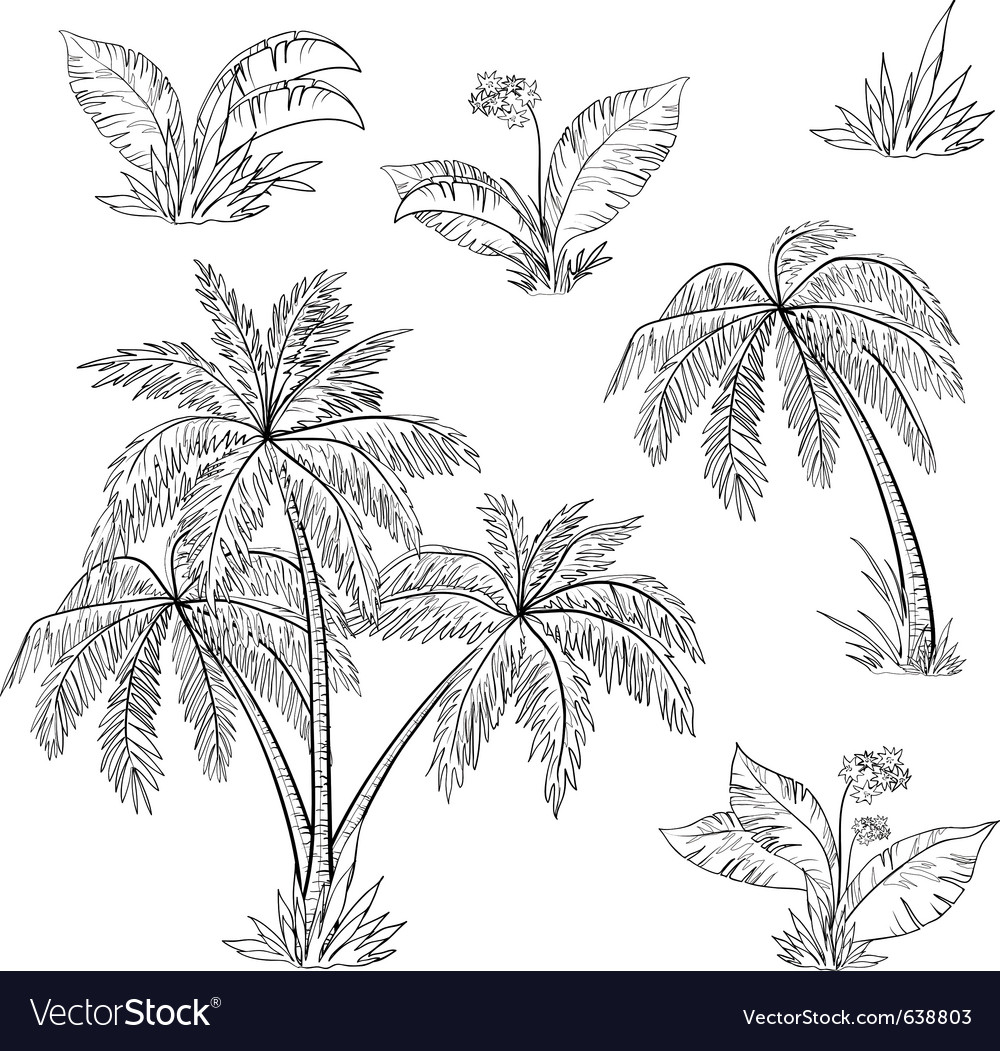 Palm trees flowers vector | Price: 1 Credit (USD $1)