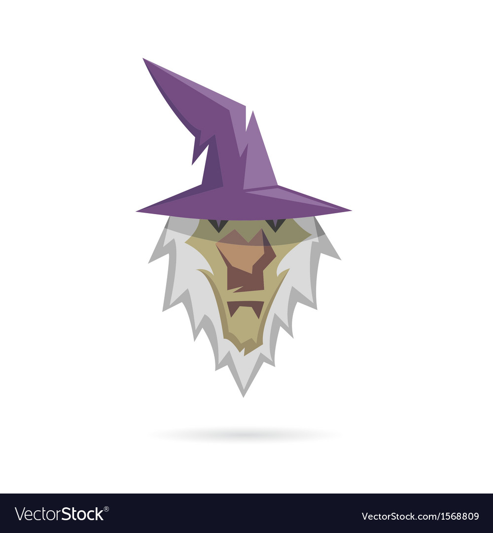 Wizard isolated on a white backgrounds vector | Price: 1 Credit (USD $1)