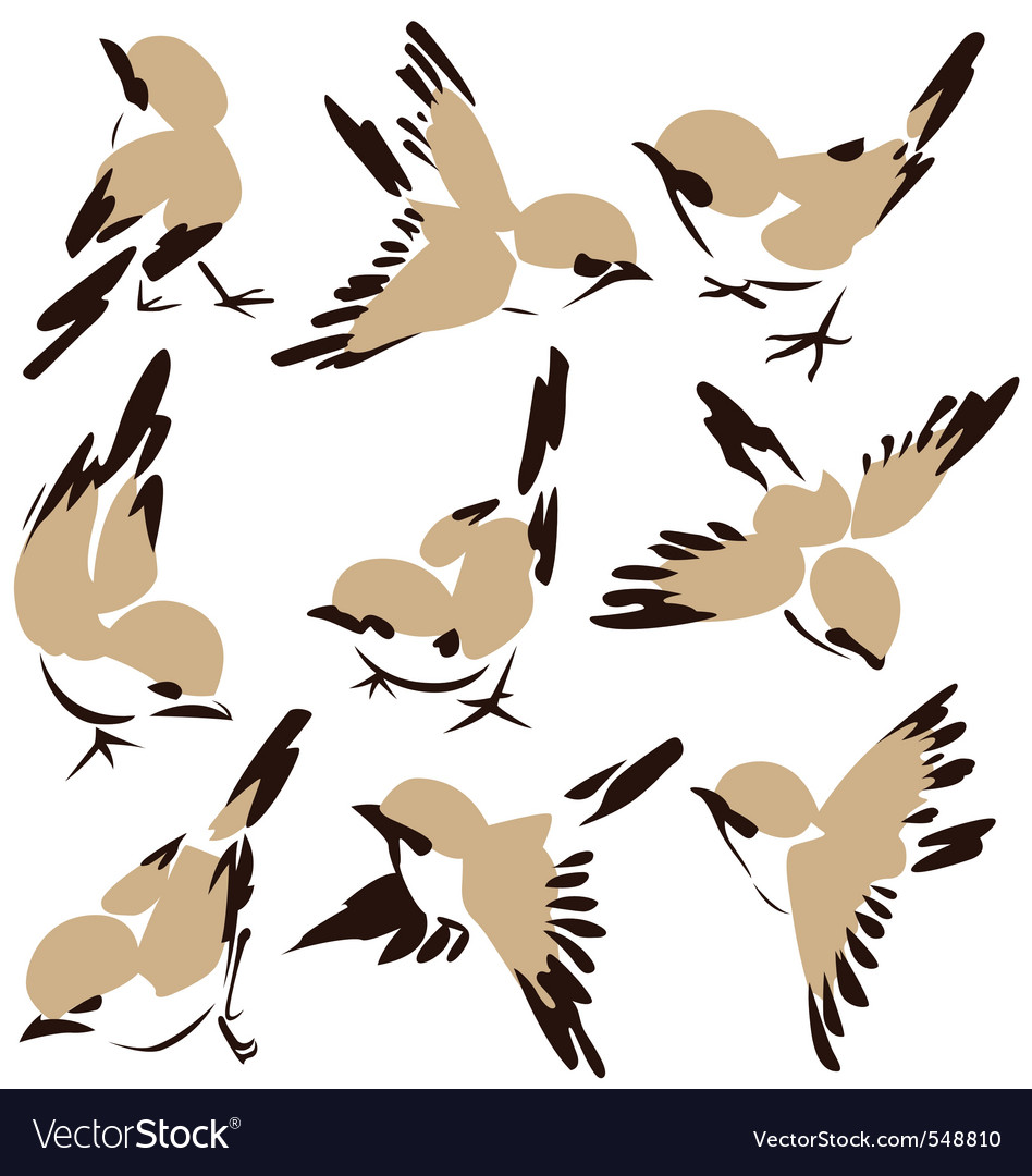 Bird drawing vector | Price: 1 Credit (USD $1)