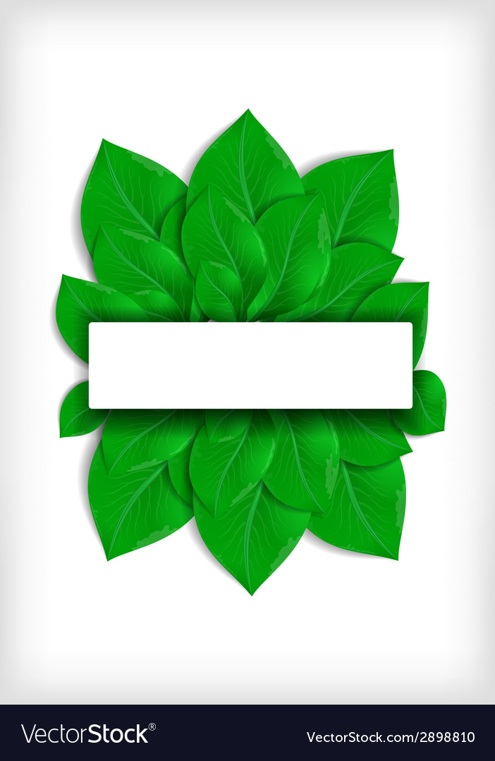 Green leaves with banner vector | Price: 1 Credit (USD $1)