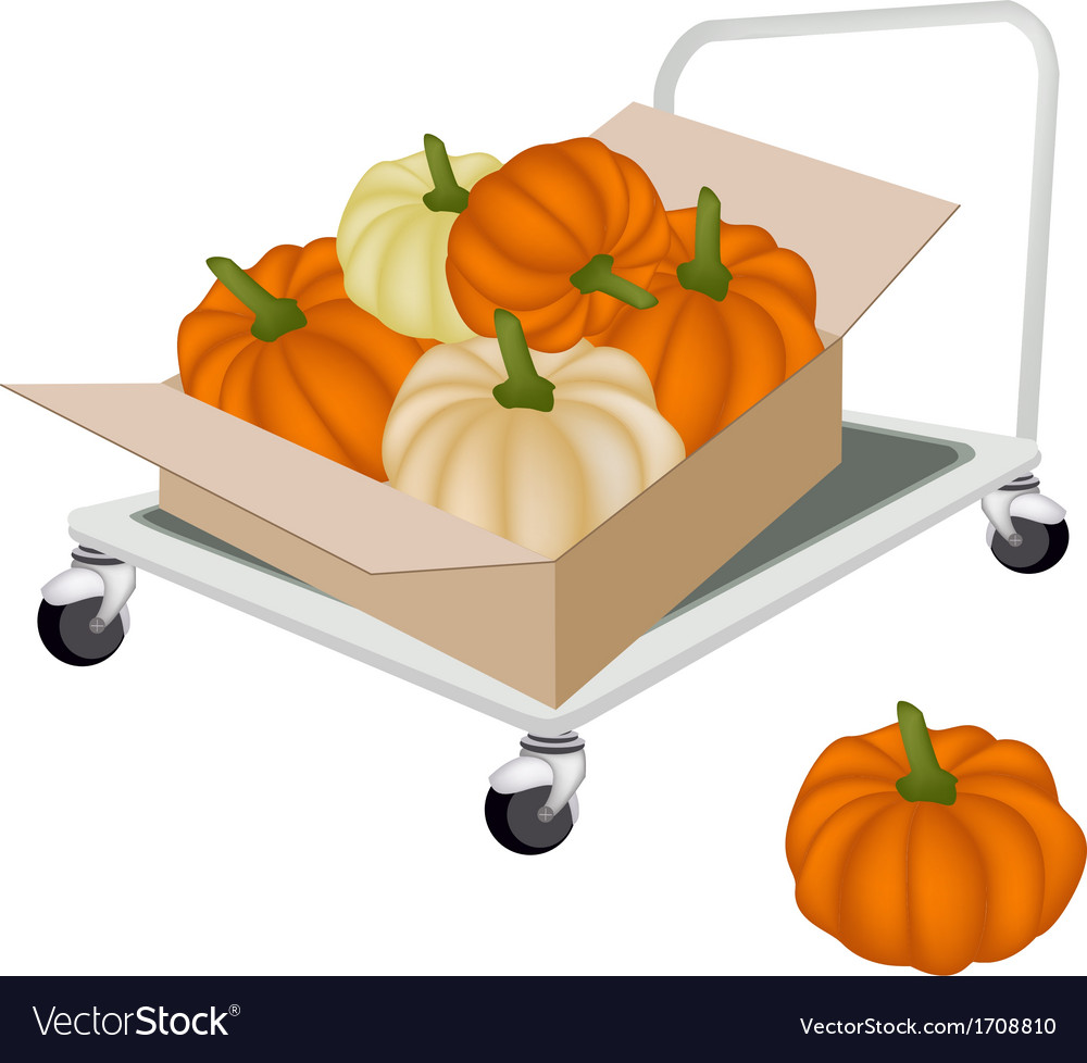 Hand truck loading pumpkins in shipping box vector | Price: 1 Credit (USD $1)