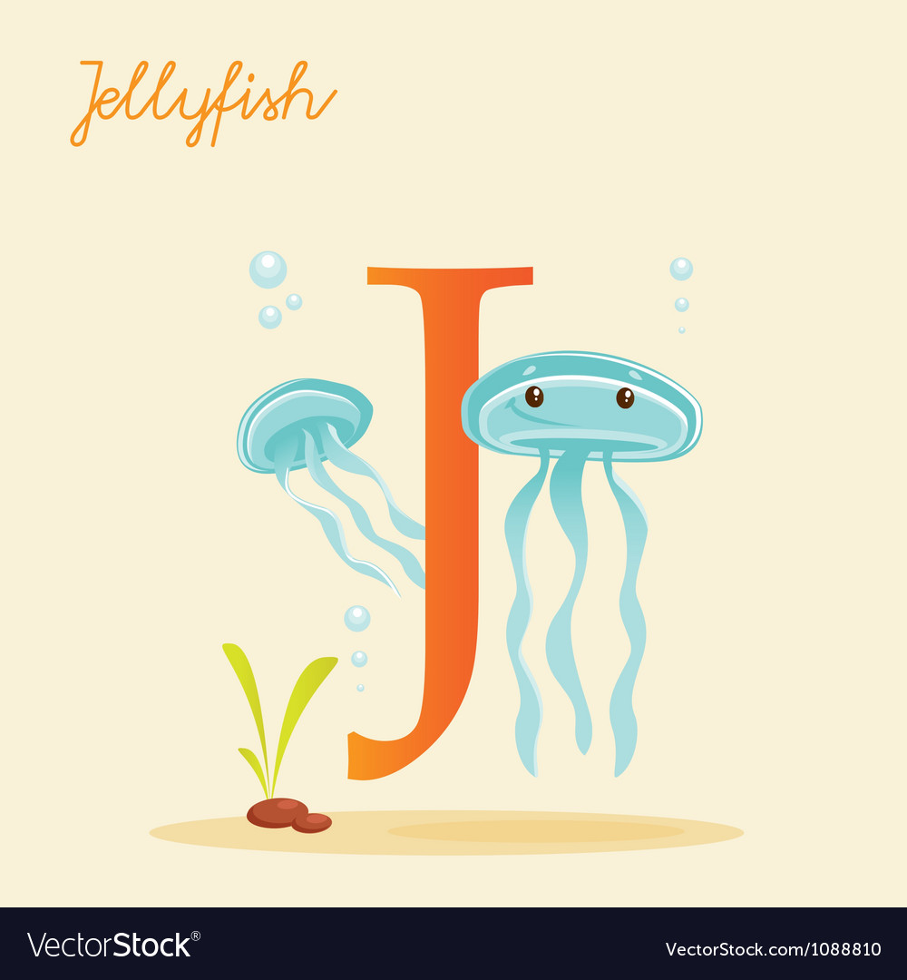 J for jellyfish vector   Price: 1 Credit (USD $1)