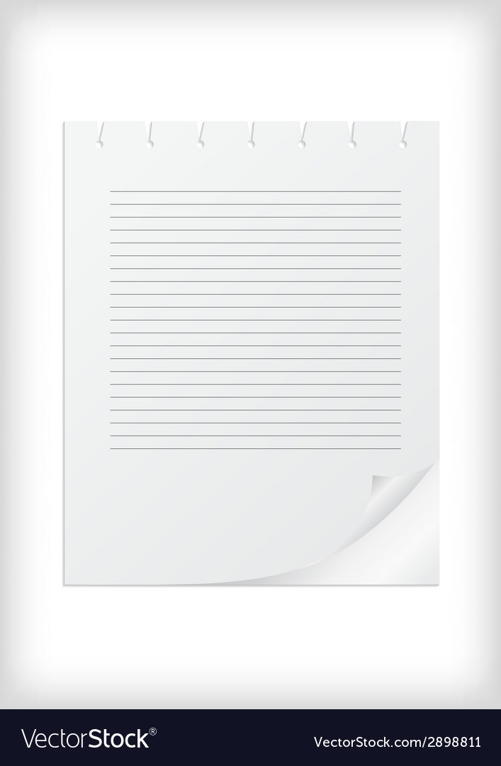 Lined paper with curled corner vector | Price: 1 Credit (USD $1)