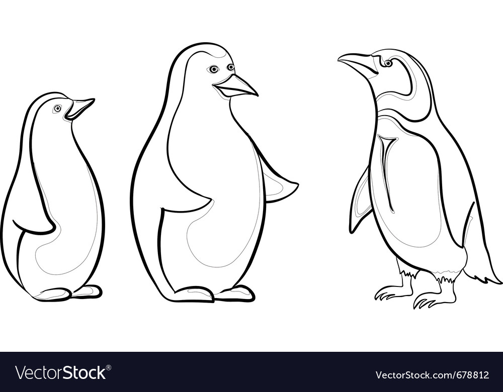 Emperor penguins contours vector | Price: 1 Credit (USD $1)