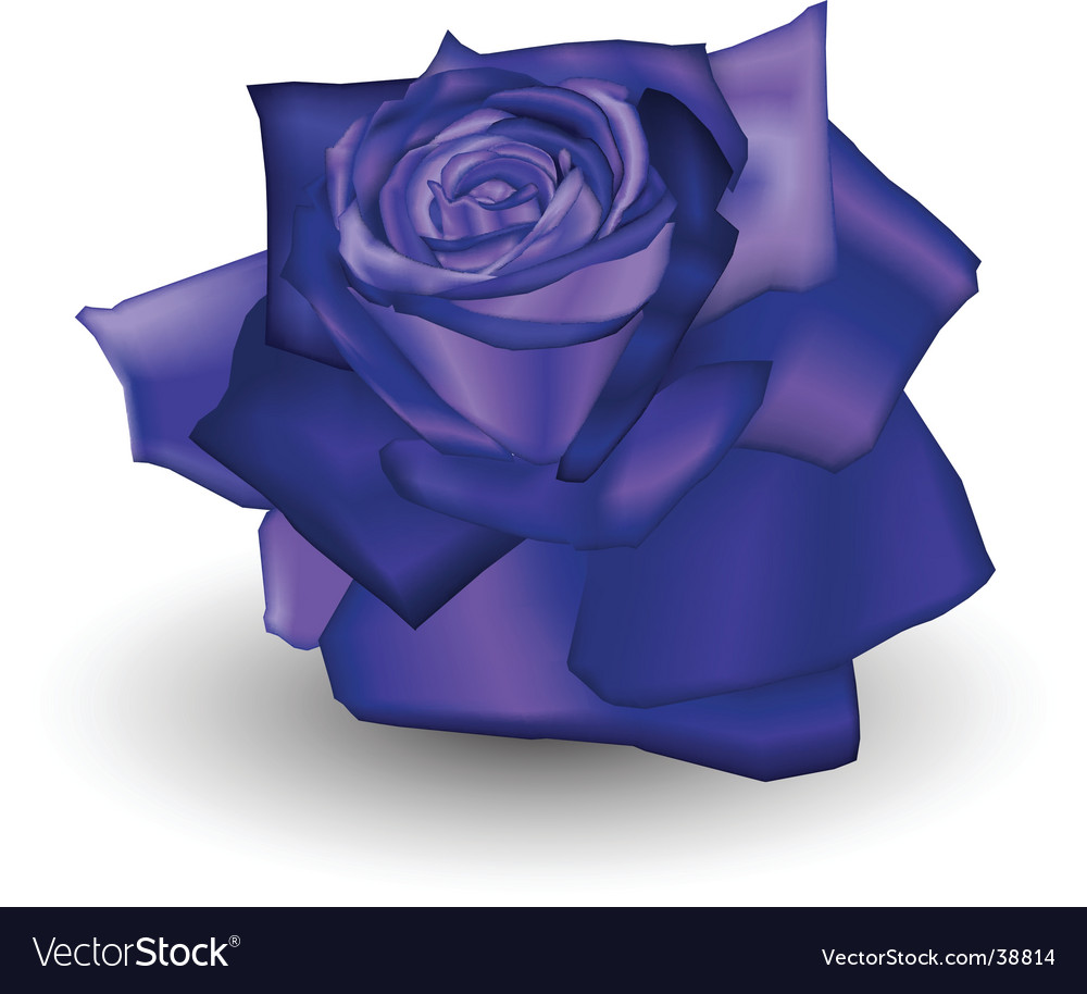 Indigo rose vector | Price: 1 Credit (USD $1)