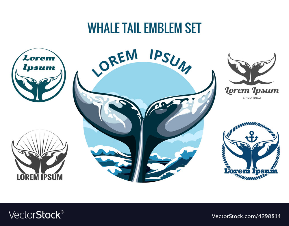 Whale tail set vector