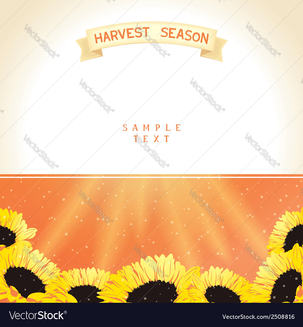 Harvest season with sunflowers vector | Price: 1 Credit (USD $1)