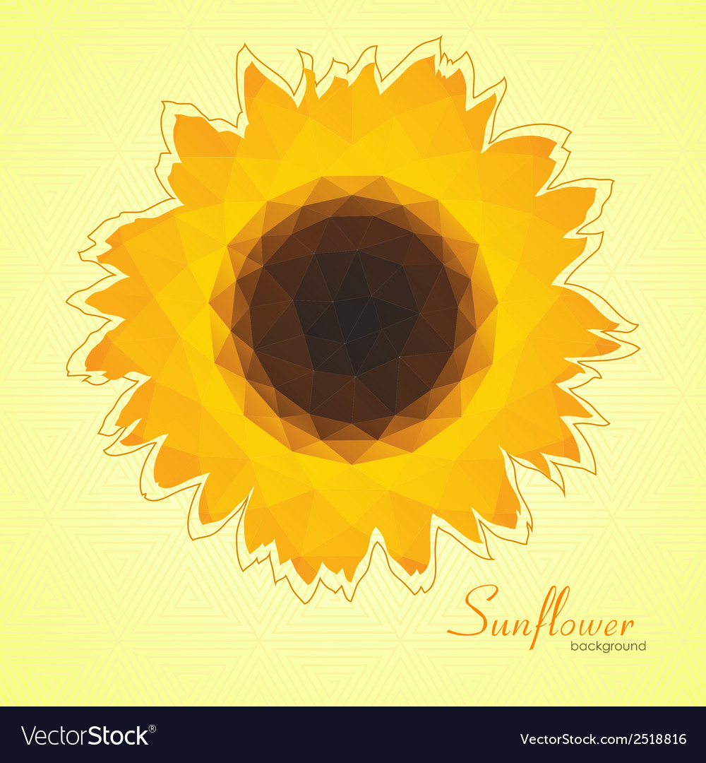 Sunflower background vector | Price: 1 Credit (USD $1)