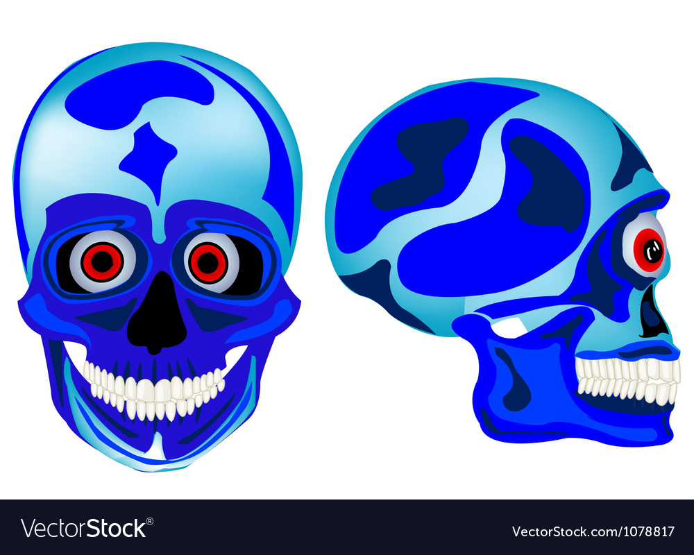 Cartoon skull of the person in front and profile vector | Price: 1 Credit (USD $1)