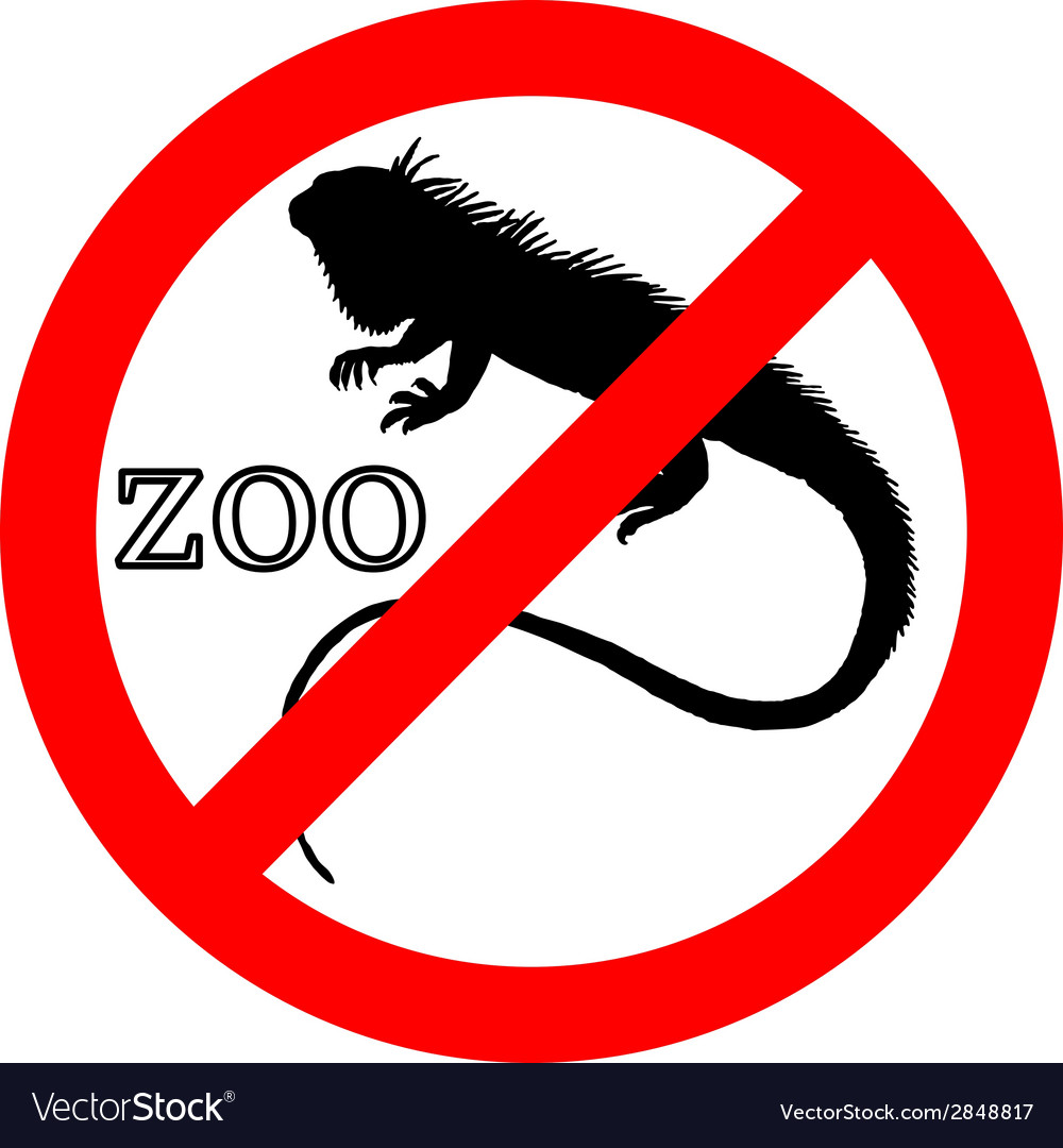 Iguana in zoo prohibited vector | Price: 1 Credit (USD $1)