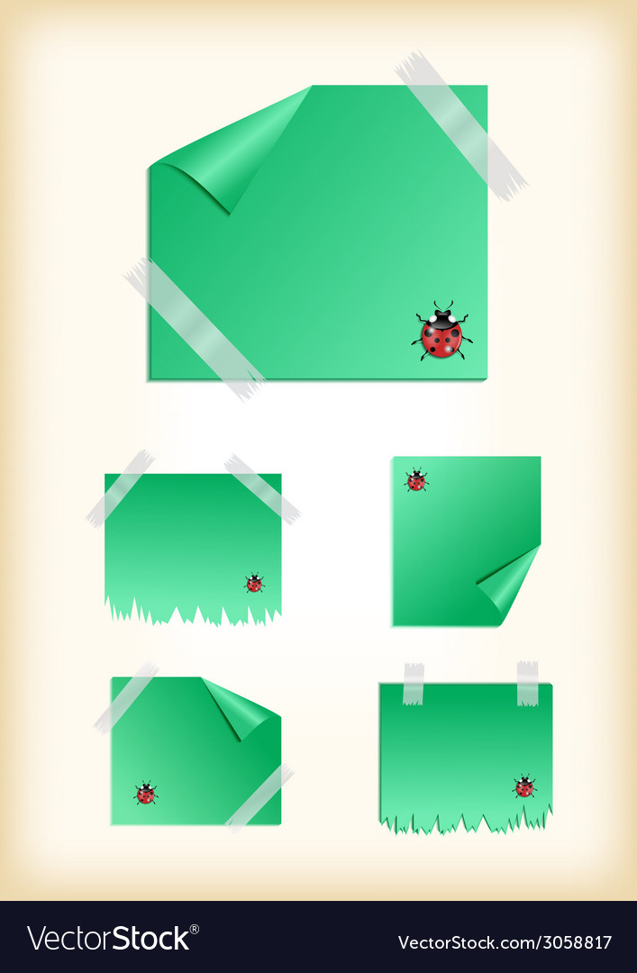 Stickers with ladybirds and scotch vector | Price: 1 Credit (USD $1)