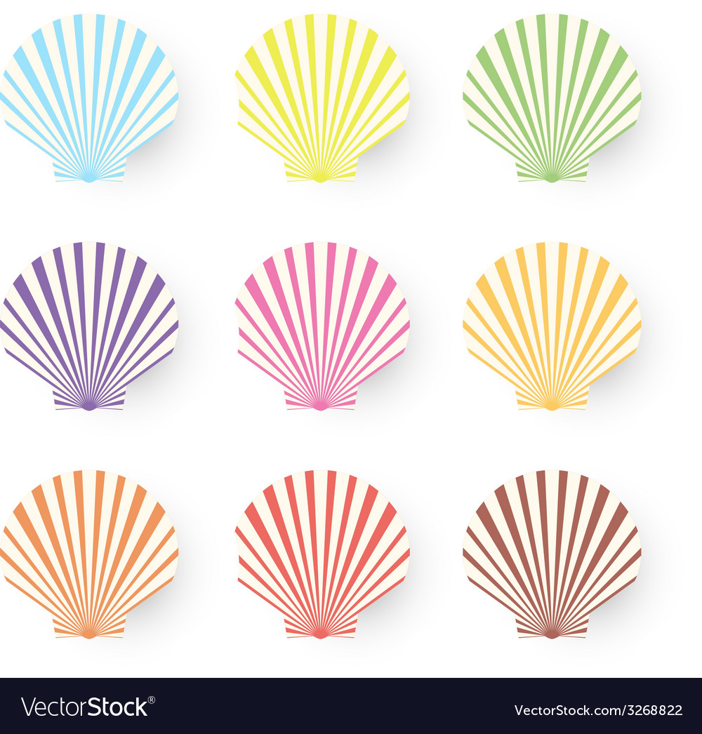 Cute nine sea shells collection isolated on white vector | Price: 1 Credit (USD $1)