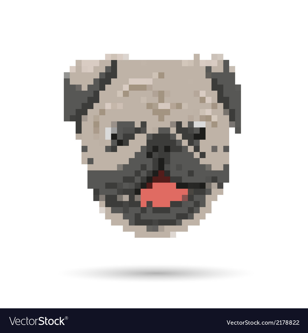 Pug portrait abstract isolated vector | Price: 1 Credit (USD $1)