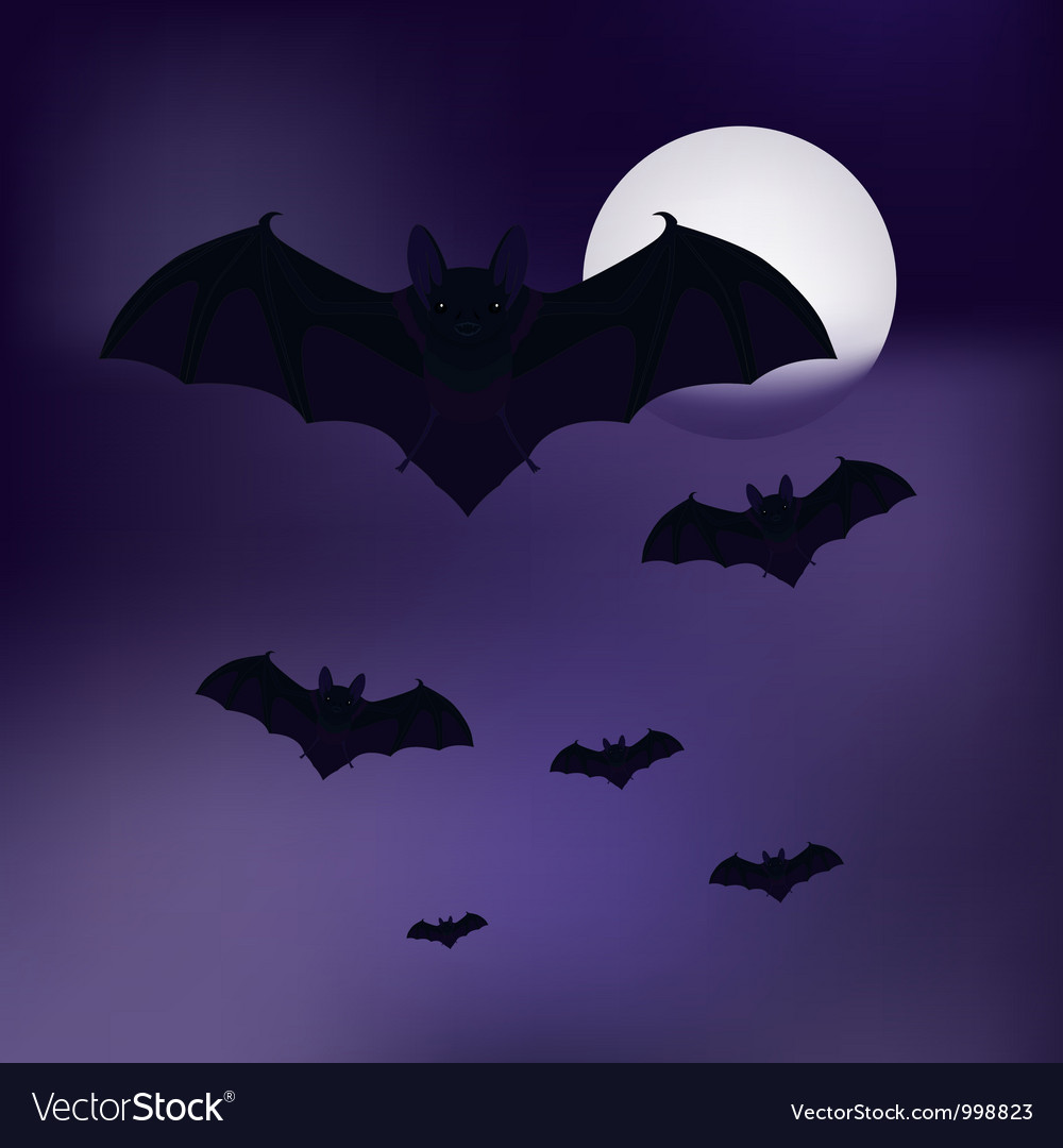 Bats in the sky vector | Price: 1 Credit (USD $1)