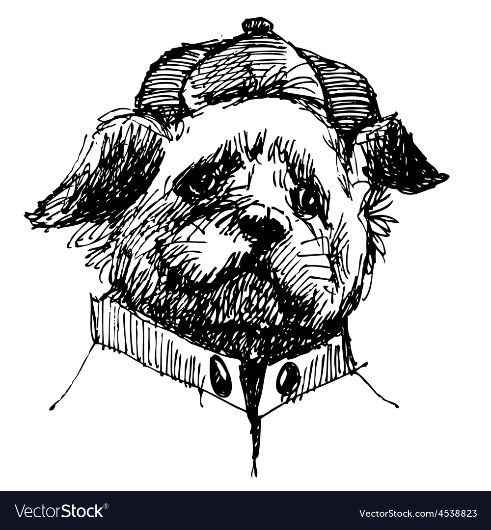 Shih tzu head vector | Price: 3 Credit (USD $3)
