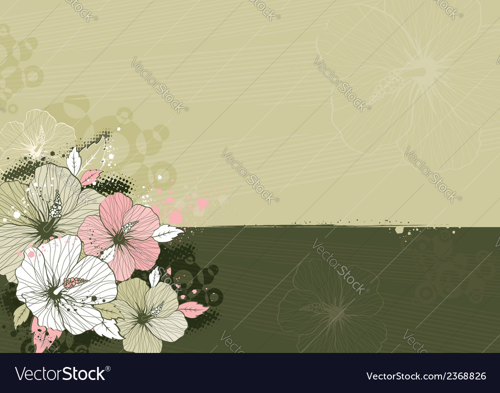 Bouquet of hibiscus on beige background vector   Price: 1 Credit (USD $1)