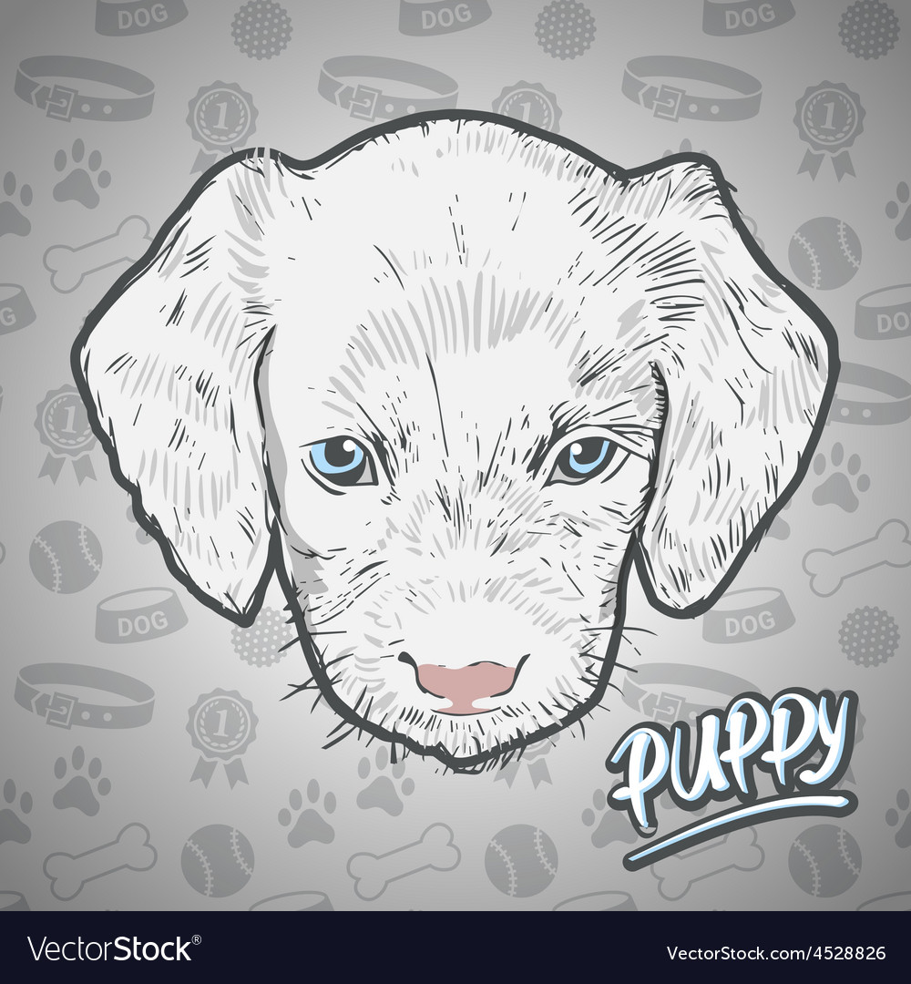 Painted head puppy vector | Price: 1 Credit (USD $1)