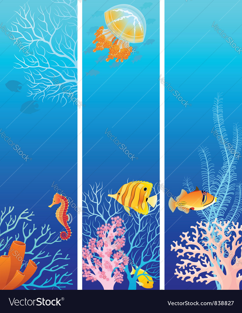Vertical sea life banners vector | Price: 3 Credit (USD $3)