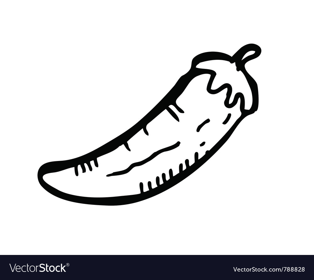 Chilli doodle vector | Price: 1 Credit (USD $1)