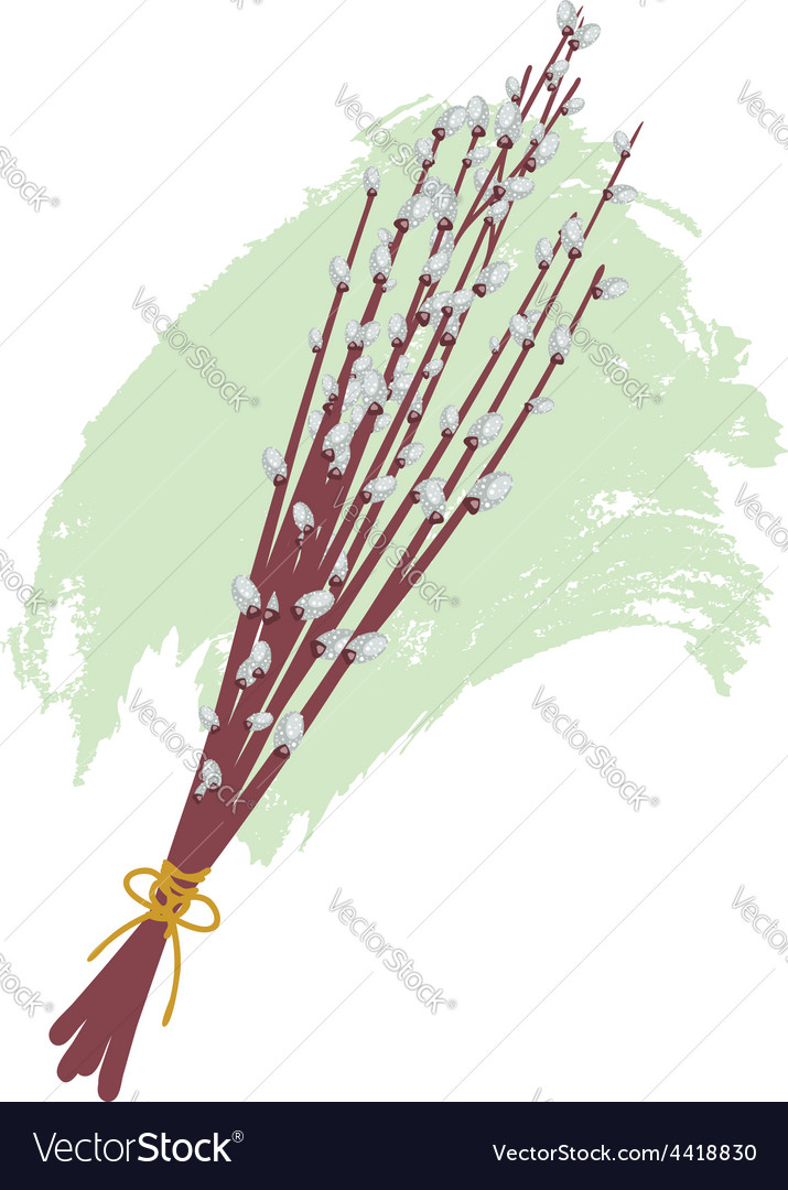 Willow branches2 vector | Price: 1 Credit (USD $1)