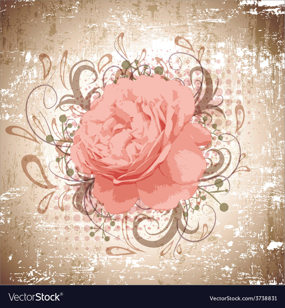Vintage abstract peony flower vector | Price: 1 Credit (USD $1)