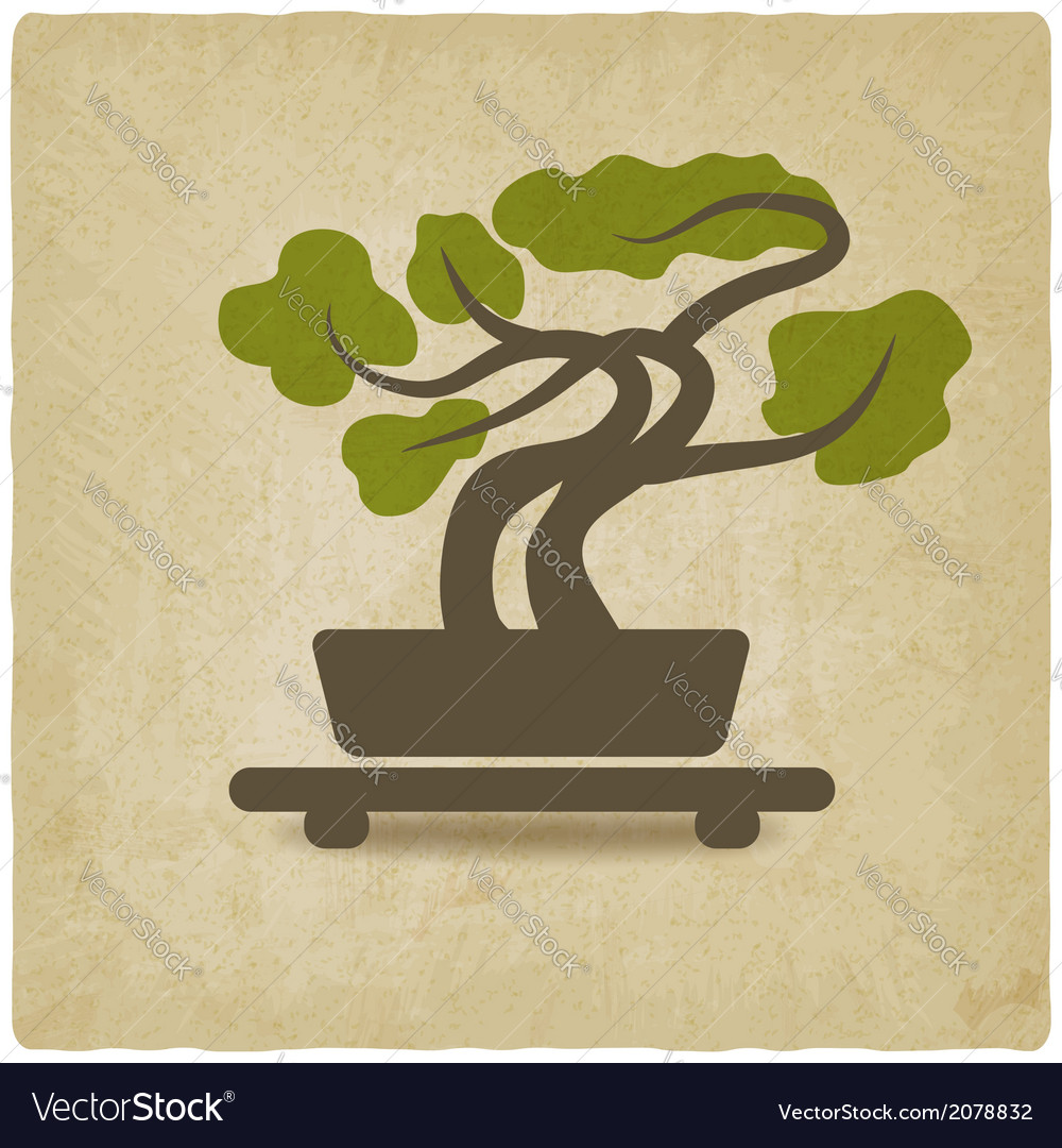 Bonsai old background vector | Price: 1 Credit (USD $1)