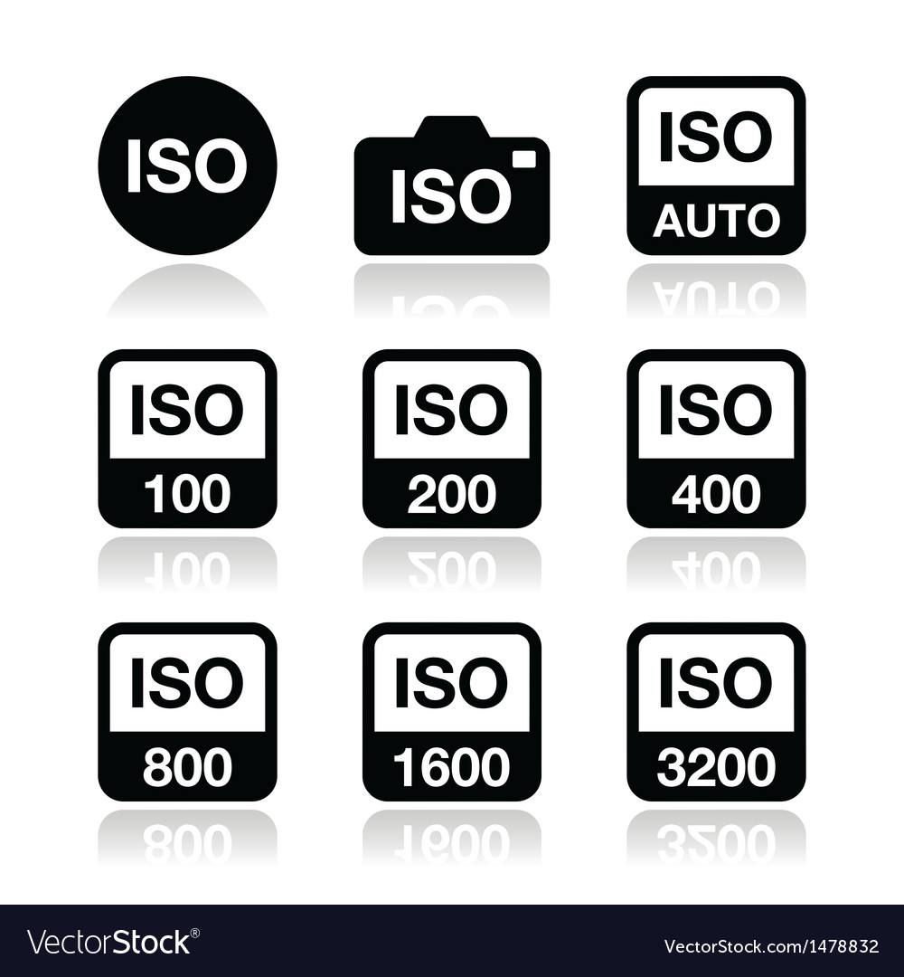 Iso - camera film speed standard icons set vector | Price: 1 Credit (USD $1)