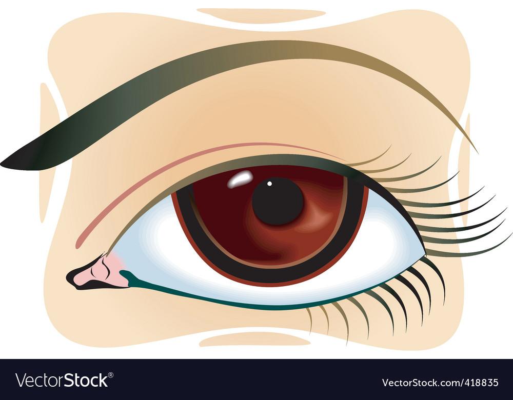 Eye plume vector | Price: 1 Credit (USD $1)