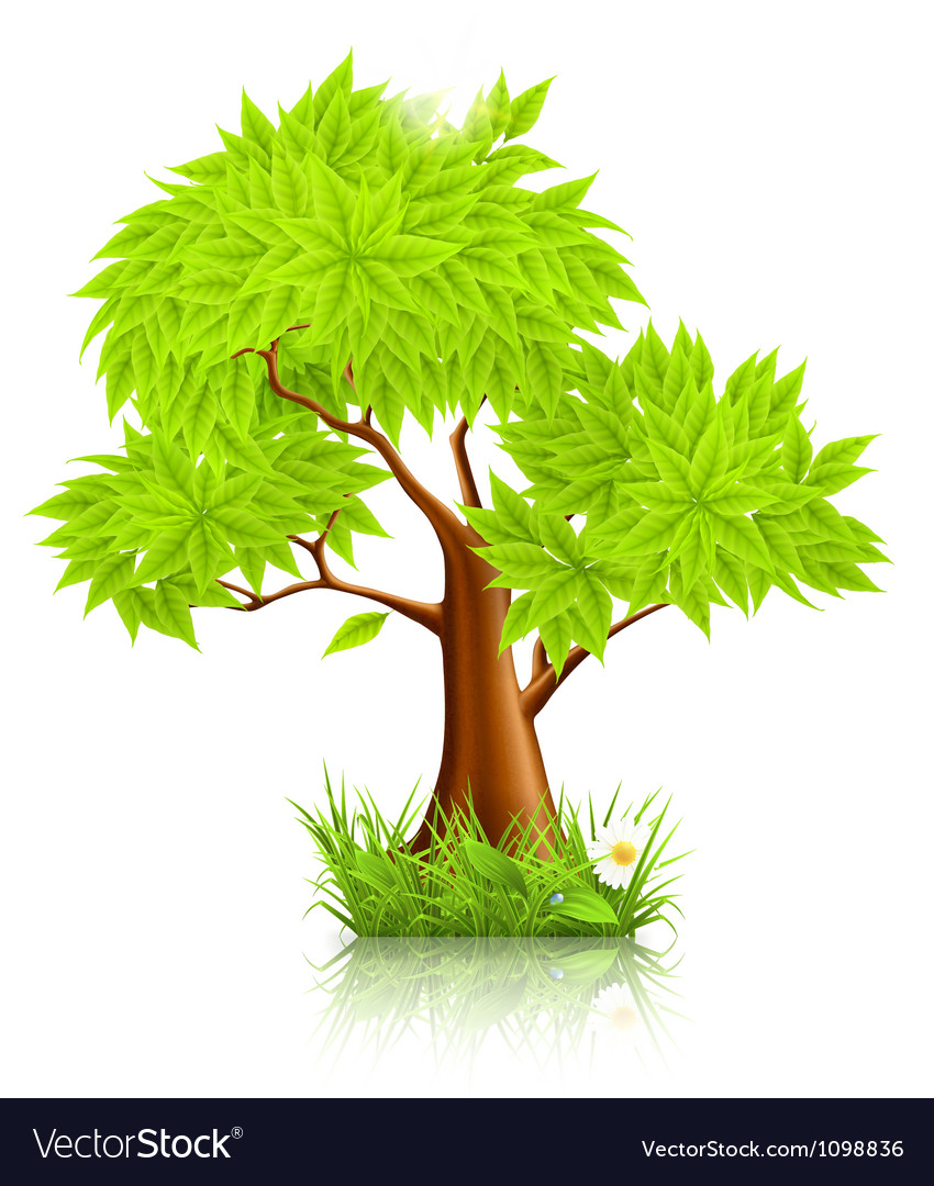 Green tree vector | Price: 1 Credit (USD $1)