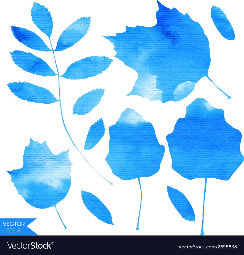 Aquamarine blue watercolor leaves vector | Price: 1 Credit (USD $1)