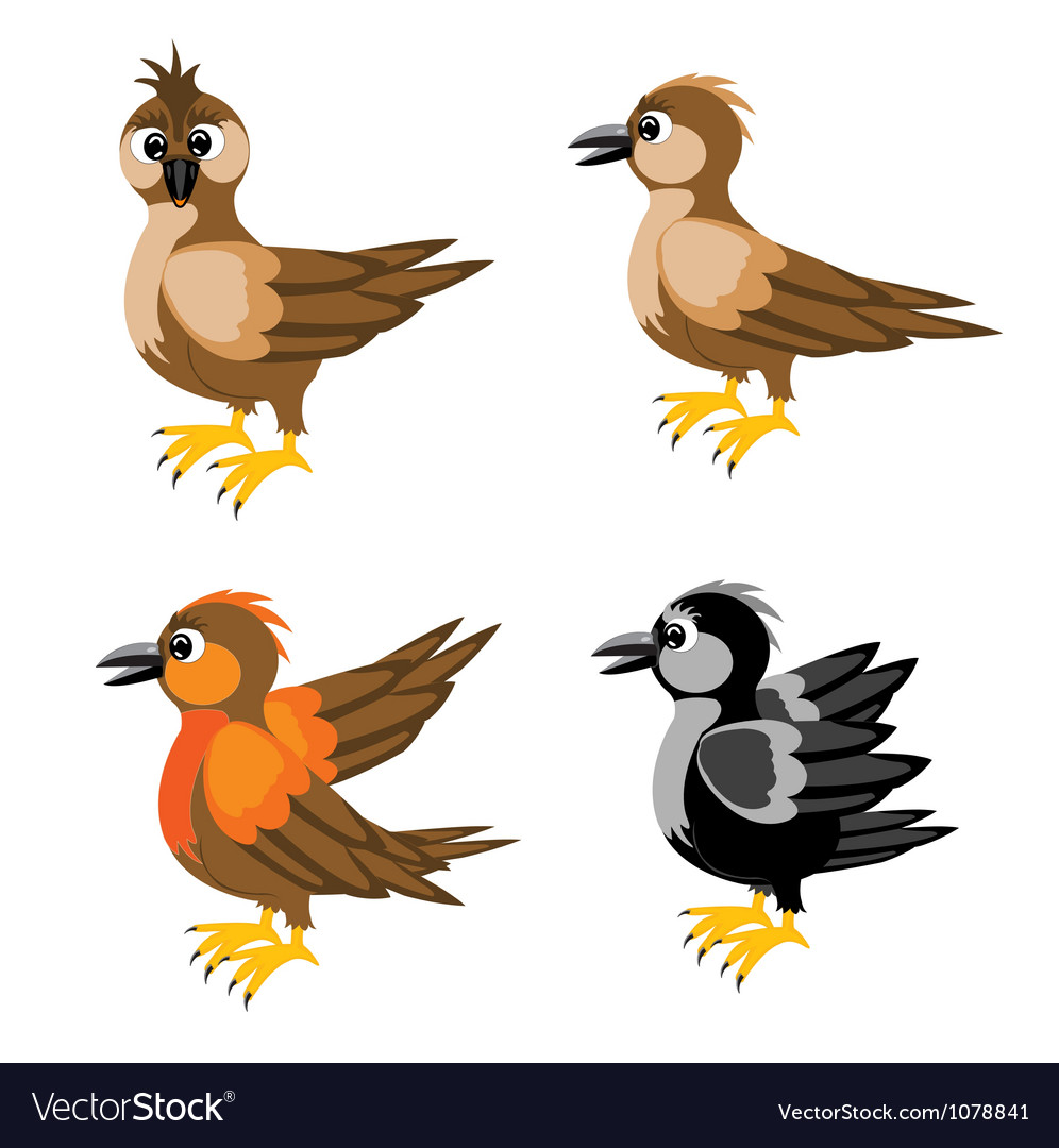 Much birds sparrow vector | Price: 1 Credit (USD $1)
