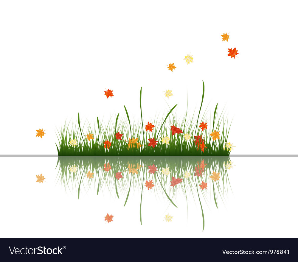 Water grass and flower vector | Price: 1 Credit (USD $1)