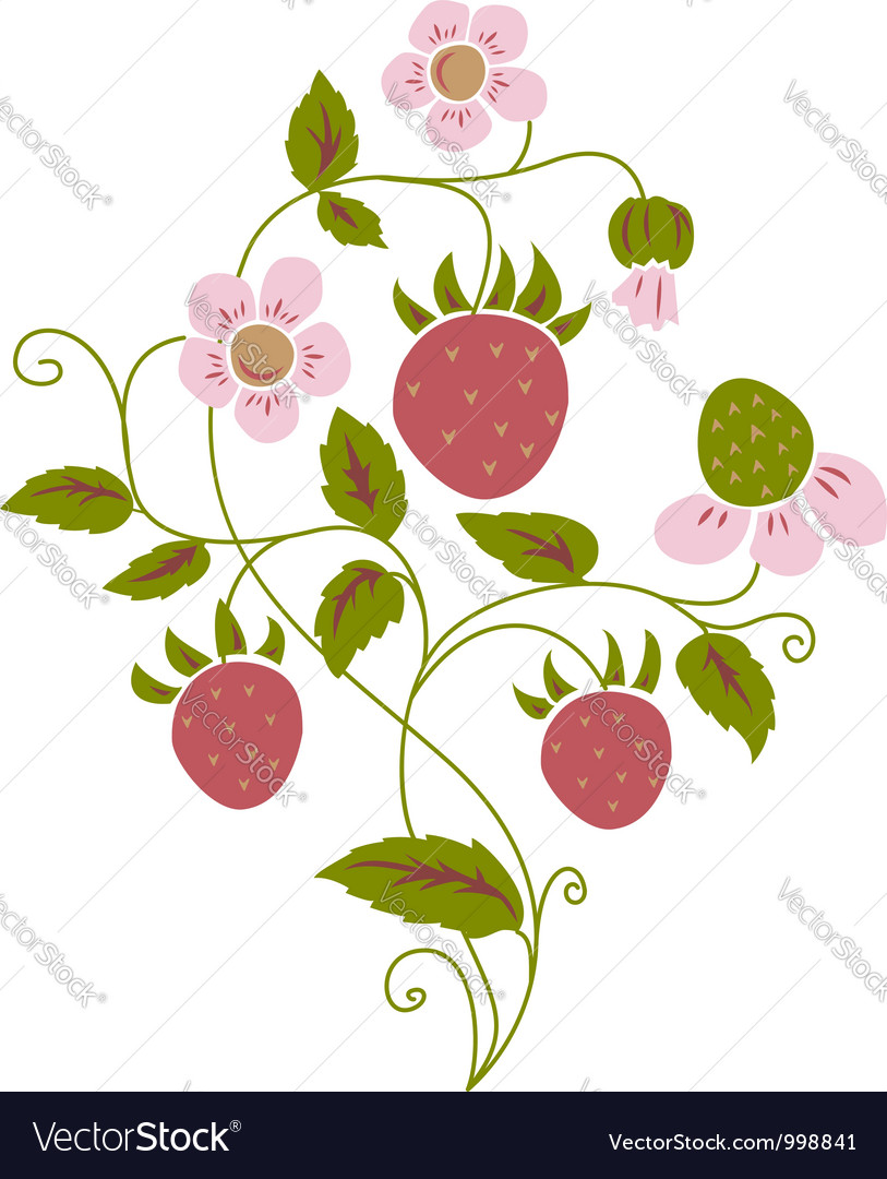 Wild strawberry vector | Price: 1 Credit (USD $1)