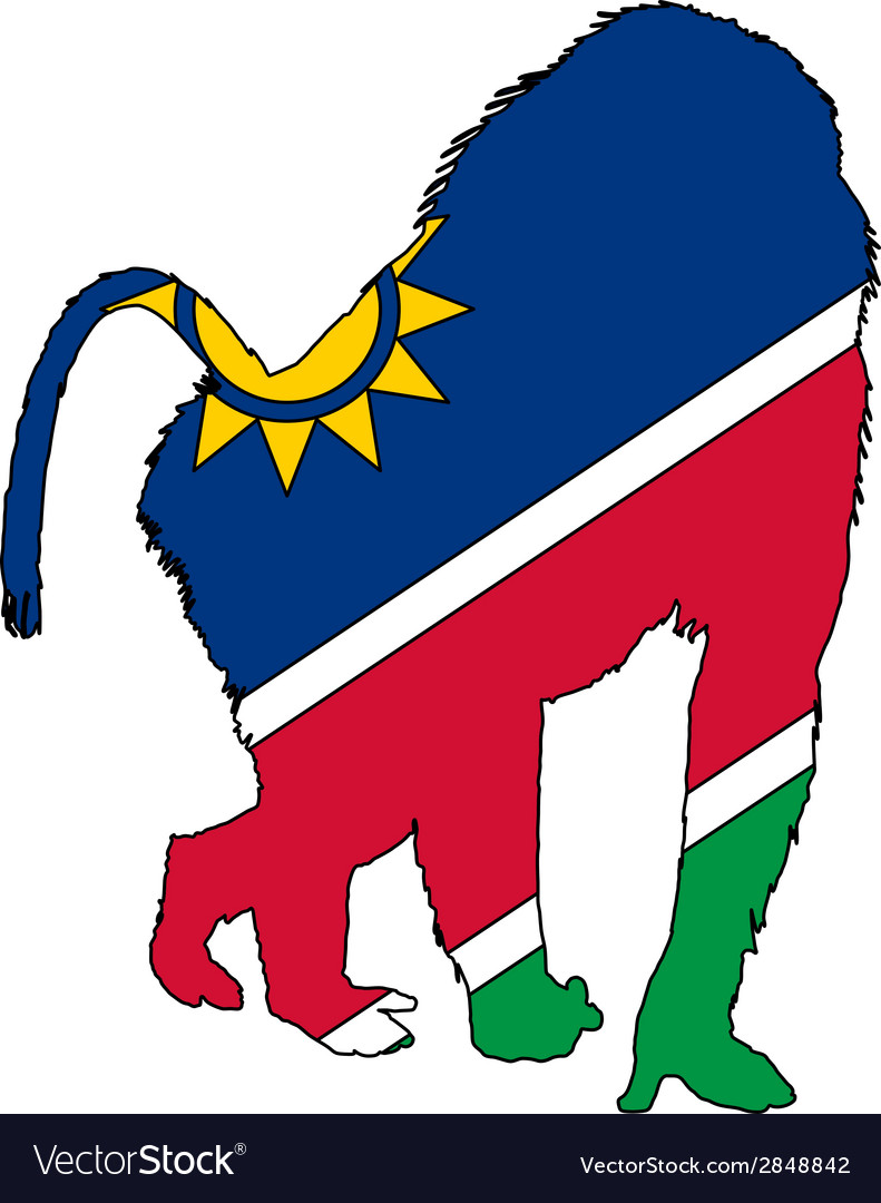 Baboon namibia vector | Price: 1 Credit (USD $1)