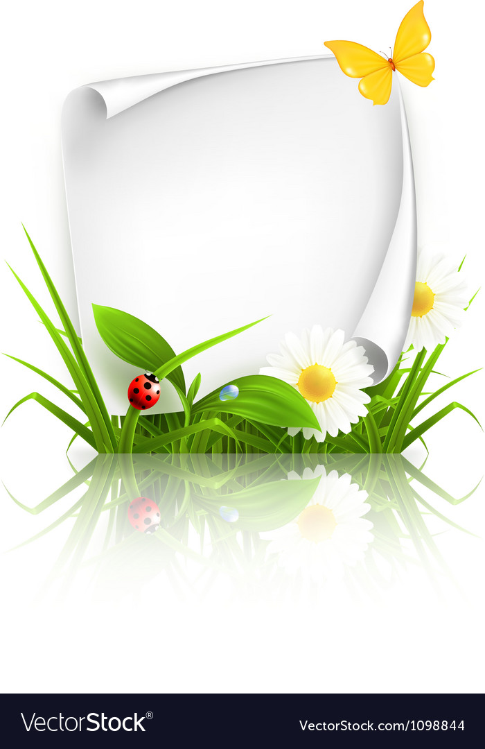Spring frame vector | Price: 3 Credit (USD $3)